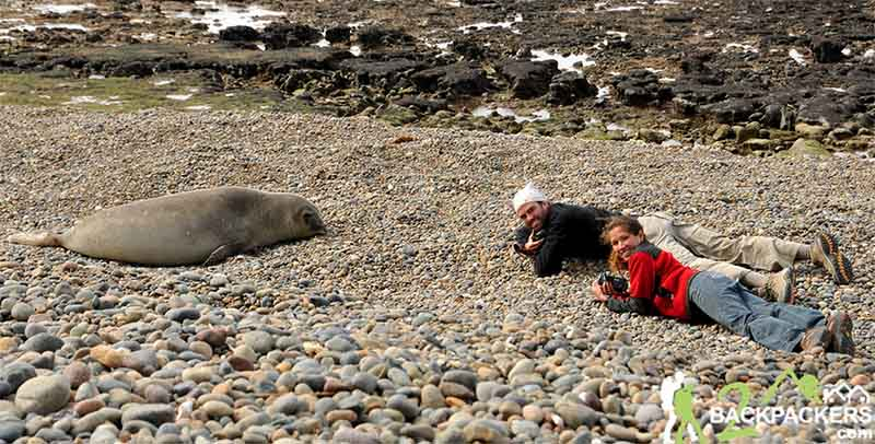 Jason and Aracely With Southern Elephant Seals