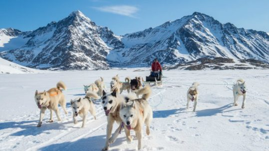 Angani on his dogsled for the hunt