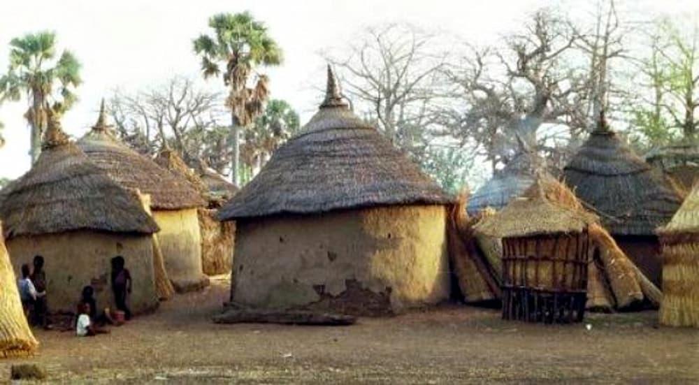 Dourtenga mud huts