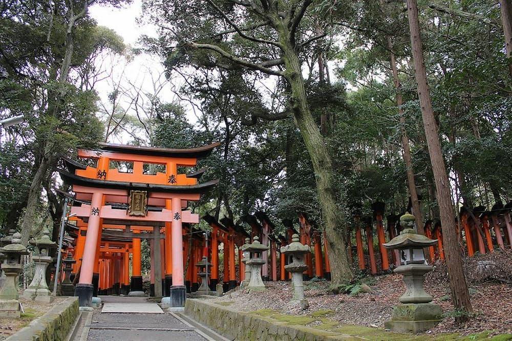 Tori at Fushimi Inari