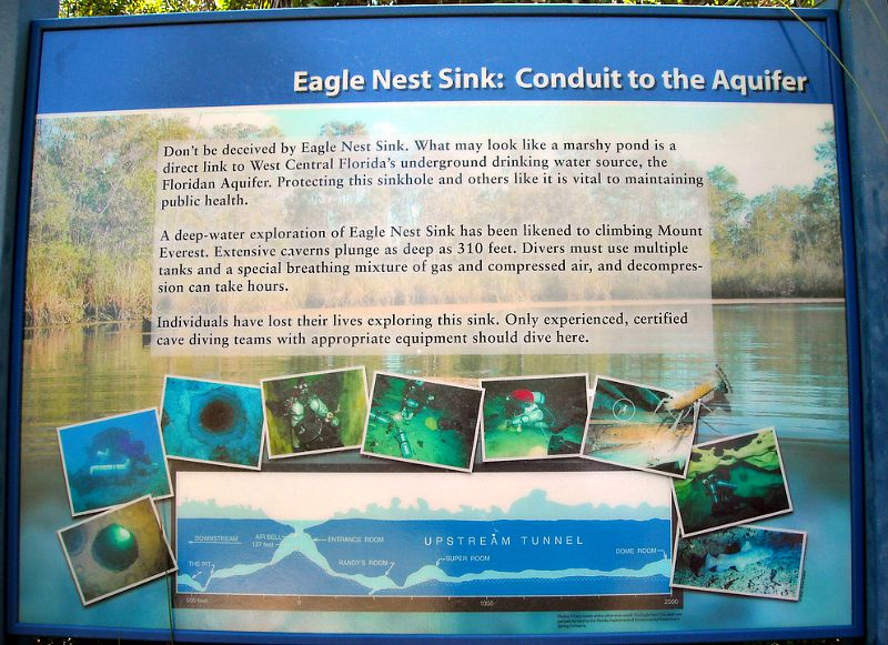 Eagle Nest Sink