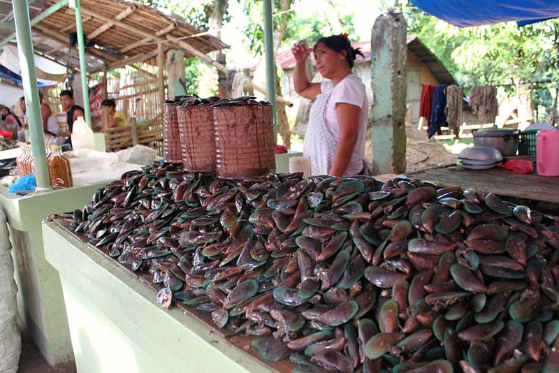 Street vendor selling mussels in the Philippines
