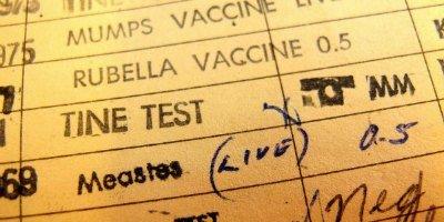 traveler diseases