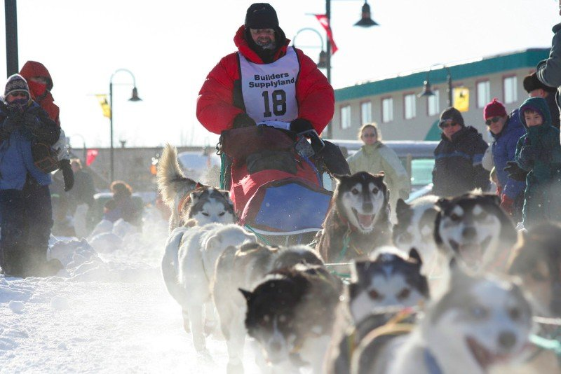 Dog sled race Yukon