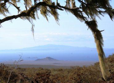 Galapagos camp